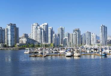 Pest Control for Condos: Everything You Need to Know
