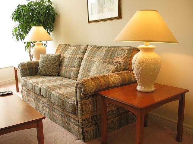 Pest Boss - condo living room