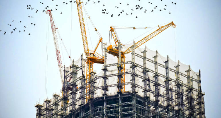 Pest Control Tips for Construction Sites